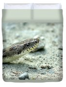 The Gray Eastern Rat Snake Right Side Head Shot Duvet Cover