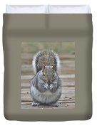 The Gray Squirrel Duvet Cover