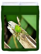 The Green Spider Duvet Cover