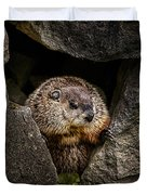 The Groundhog Duvet Cover