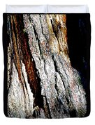 The Heart Of Barkness In Mariposa Grove In Yosemite National Park-california  Duvet Cover