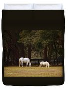 The Horse And The Pony - Standard Size Duvet Cover
