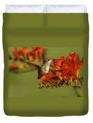 The Hummingbird Turns   Duvet Cover