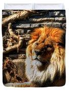 The King Lazy Boy At The Buffalo Zoo Duvet Cover