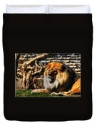 The King Lazy Boy At The Buffalo Zoo Duvet Cover