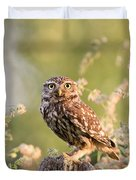 The Little Owl Duvet Cover