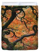 The Maple Tree At Portland Japanese Garden Duvet Cover