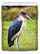 The Marabou Stork In Tanzania. Africa Duvet Cover