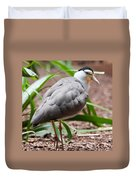 The Masked Lapwing Vanellus Miles Previously Known As The Mask Duvet Cover