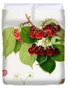 The May Duke Cherry Duvet Cover by William Hooker