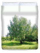 The Old Birch Tree Duvet Cover