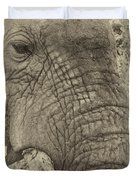 The Old Elephant Bull Duvet Cover