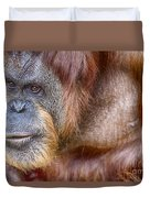 The Orangutan Album  Duvet Cover