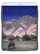 The Painters Palette Jujuy Argentina Duvet Cover