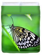 The Paper Kite Or Rice Paper Or Large Tree Nymph Butterfly Also Known As Idea Leuconoe Duvet Cover