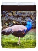 The Peacock Duvet Cover by Pixel  Chimp
