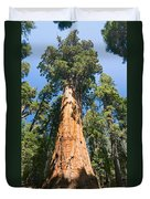 The President - Very Large And Old Sequoia Tree At Sequoia National Park. Duvet Cover
