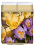 The Purple And Yellow Crocus Flowers Duvet Cover