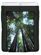 The Redwood Giants Duvet Cover