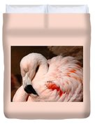 The Shy Flamingo Duvet Cover