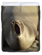 The Singing Seal Duvet Cover