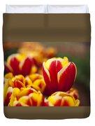 The Single Big Tulip Duvet Cover