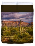 The Sonoran Golden Hour  Duvet Cover