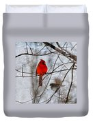 Blue Eyes In The Snow Cardinal  Duvet Cover