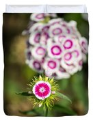 The Star - Beautiful Spring Dianthus Flowers In Bloom. Duvet Cover