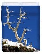 The Start Of Winter Duvet Cover
