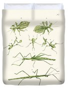 The Stick Insect Duvet Cover