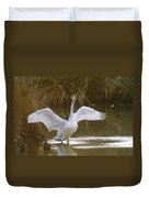 The Swan Spreads Its Wimgs Duvet Cover