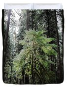 The Tree In The Forest Duvet Cover