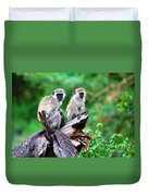 The Vervet Monkey. Lake Manyara. Tanzania. Africa Duvet Cover