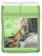 The Watching Chipmunk Reclines Duvet Cover