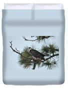 The Wild Osprey Duvet Cover