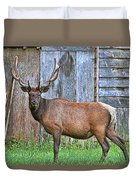 There's An Elk By The Barn Duvet Cover