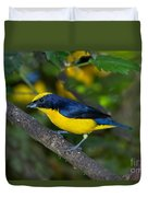 Thick-billed Euphonia Duvet Cover