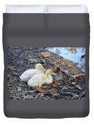 Three Baby Ducks Duvet Cover