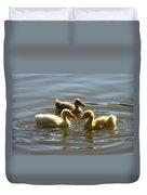 Three Baby Ducks Swimming Duvet Cover