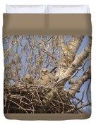 Three Baby Owls  Duvet Cover