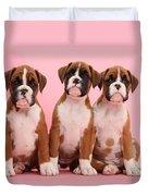 Three Boxer Puppies Duvet Cover