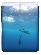 Three Dolphins Swimming Underwater Duvet Cover