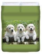 Three Golden Retriever Puppies Duvet Cover