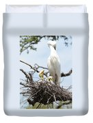 Three Great Egret Chicks In Nest Duvet Cover by Carol Groenen