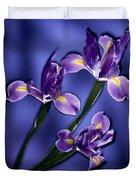 Three Iris Xiphium Duvet Cover
