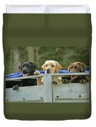 Three Kinds Of Labradors Duvet Cover