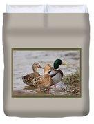 Three Mallards Card - Ducks Duvet Cover