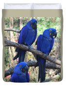 Three Pals Duvet Cover by Kathleen Struckle