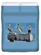 Three Pelicans Duvet Cover